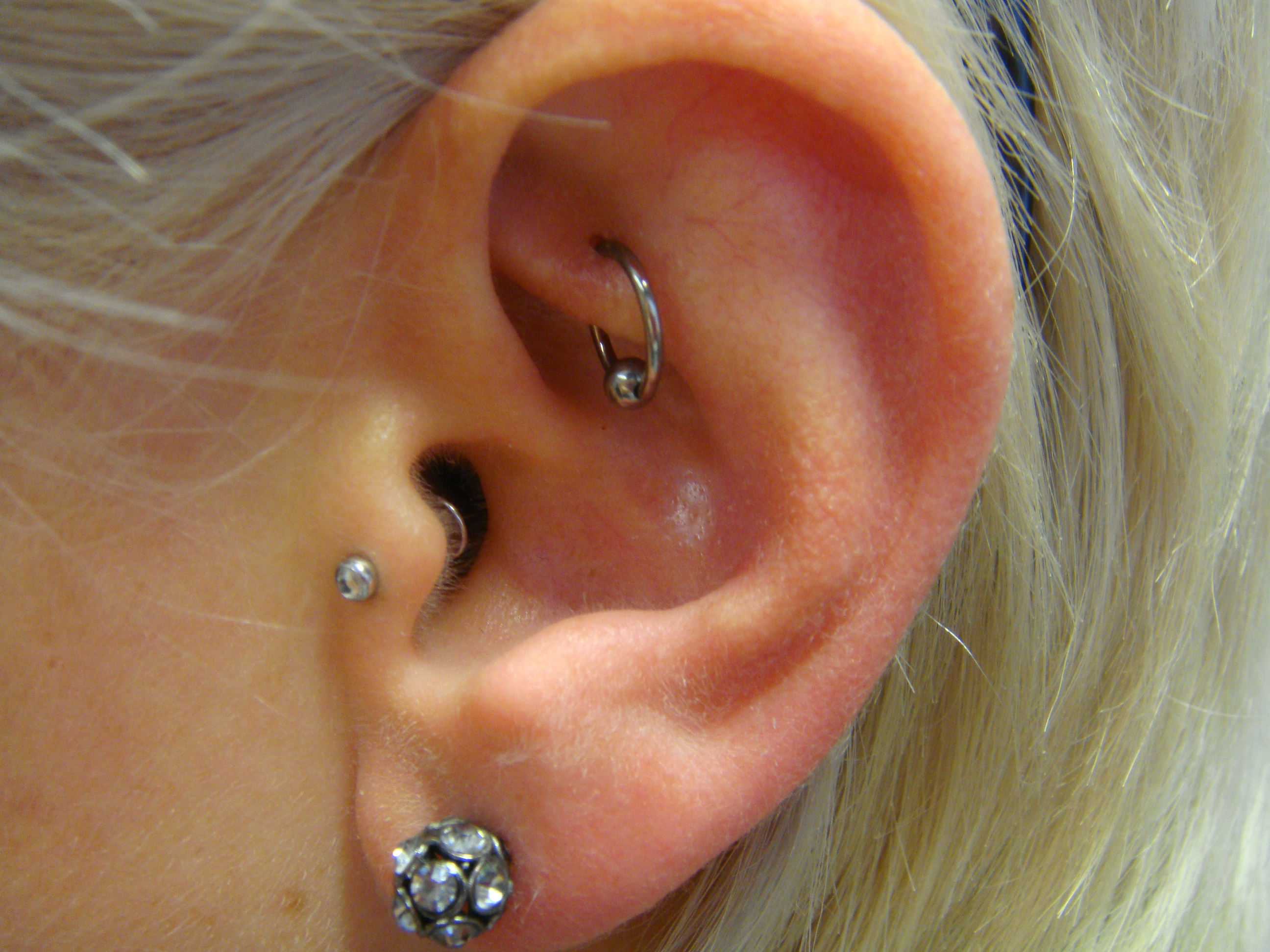 Piercing; Ohr; Tragus; Rook